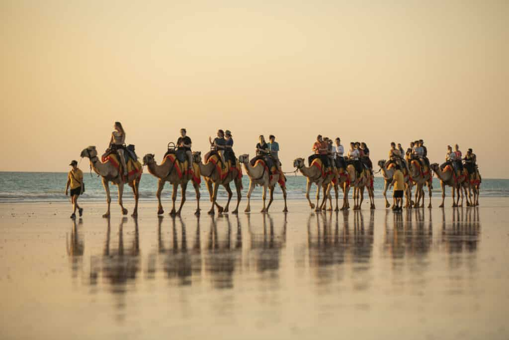 Camels at sunset on Cable Beach, Broome