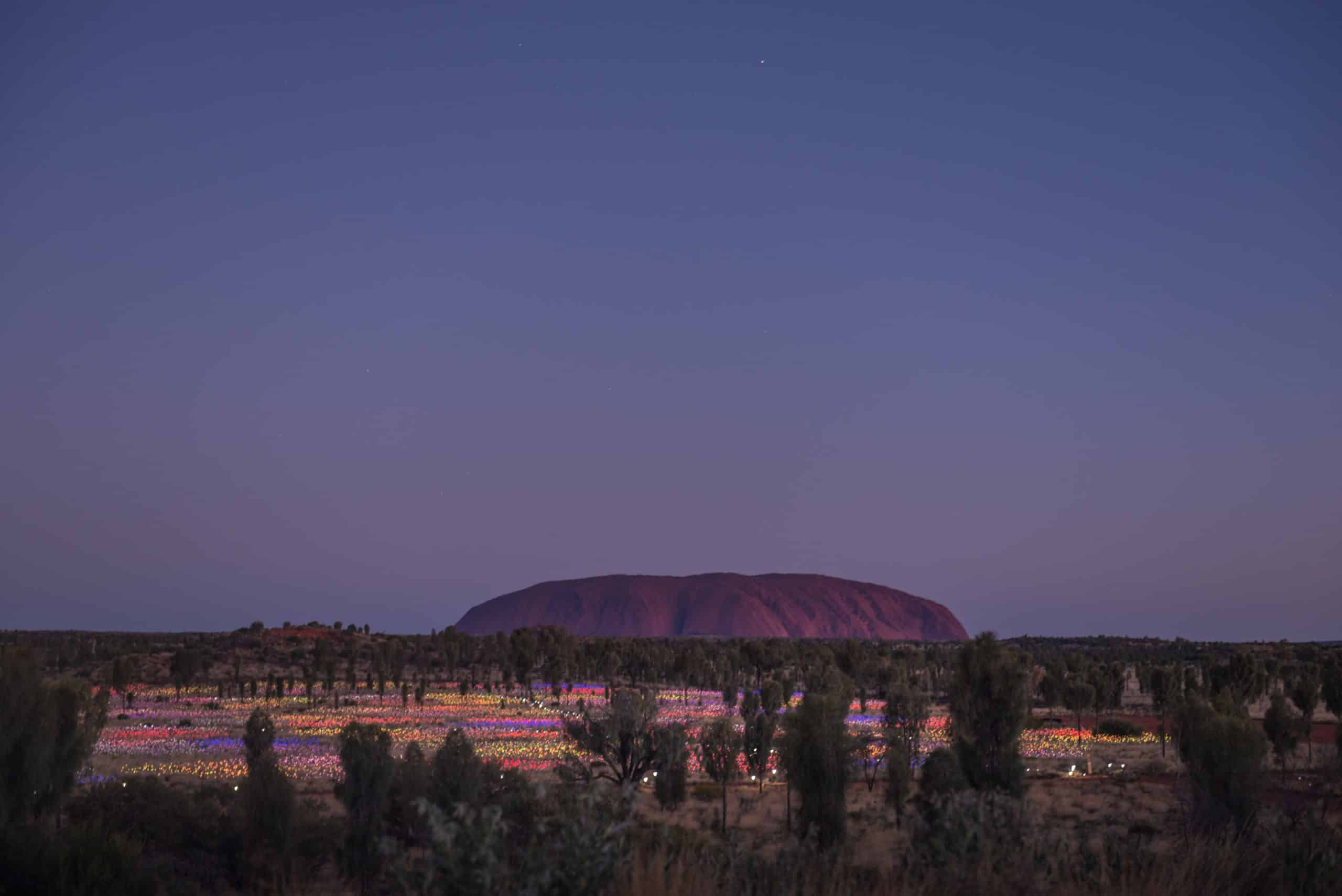 Uluru across the Field of Light